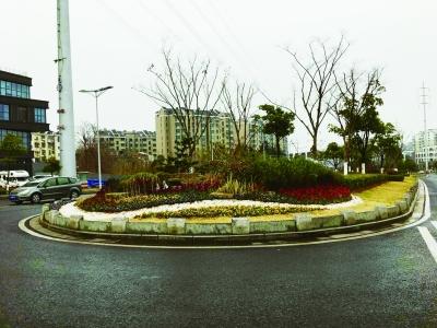 中央北路岛头设置的花境
