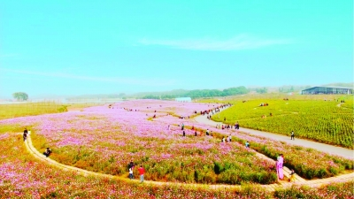 """""""吃葡萄,采草莓,看美景,游山水,品紫酒""""已经成为畅游句容的新标配,"""""""