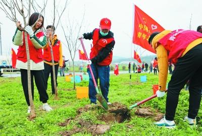 青年投身植树护绿活动